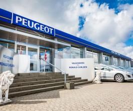 Hovedrengøring hos Peugeot